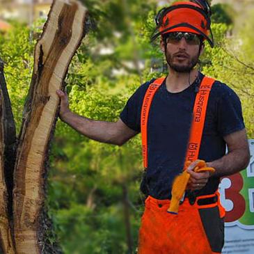 corso arboricoltura
