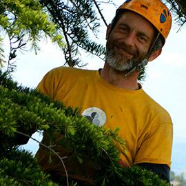 corso arboricoltura consigli