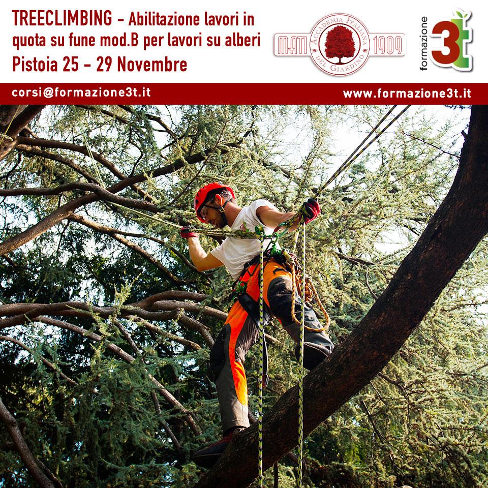 corso tree climbing pistoia