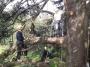CORSO DI TREE CLIMBING - Operatori addetti ai sistemi di accesso e posizionamento mediante funi per lavori su alberi f3t-abilitazione-lavori-in-quota-107.jpg