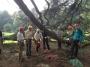 CORSO DI TREE CLIMBING - Operatori addetti ai sistemi di accesso e posizionamento mediante funi per lavori su alberi f3t-abilitazione-lavori-in-quota-114.jpg