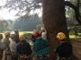 CORSO DI TREE CLIMBING - Operatori addetti ai sistemi di accesso e posizionamento mediante funi per lavori su alberi f3t-abilitazione-lavori-in-quota-115.jpg