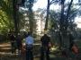 CORSO DI TREE CLIMBING - Operatori addetti ai sistemi di accesso e posizionamento mediante funi per lavori su alberi f3t-abilitazione-lavori-in-quota-126.jpg