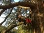 CORSO DI TREE CLIMBING - Operatori addetti ai sistemi di accesso e posizionamento mediante funi per lavori su alberi f3t-abilitazione-lavori-in-quota-132.jpg