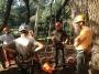CORSO DI TREE CLIMBING - Operatori addetti ai sistemi di accesso e posizionamento mediante funi per lavori su alberi f3t-abilitazione-lavori-in-quota-136.jpg