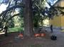 CORSO DI TREE CLIMBING - Operatori addetti ai sistemi di accesso e posizionamento mediante funi per lavori su alberi f3t-abilitazione-lavori-in-quota-137.jpg