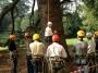 CORSO DI TREE CLIMBING - Operatori addetti ai sistemi di accesso e posizionamento mediante funi per lavori su alberi f3t-abilitazione-lavori-in-quota-139.jpg