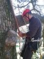 CORSO DI TREE CLIMBING - Operatori addetti ai sistemi di accesso e posizionamento mediante funi per lavori su alberi f3t-abilitazione-lavori-in-quota-151.jpg