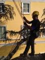 CORSO DI TREE CLIMBING - Operatori addetti ai sistemi di accesso e posizionamento mediante funi per lavori su alberi f3t-abilitazione-lavori-in-quota-152.jpg