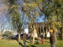 Seminario biomeccanica del cedimento degli alberi biomeccanica-alberi030.jpg