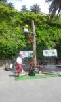 Cantieri di arboricoltura cantieri-arboricoltura-002.jpg
