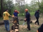 WORKSHOP CORRETTO UTILIZZO DELLA MOTOSEGA - 2012 corretto-uso-motosega201116.jpg