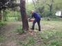 WORKSHOP CORRETTO UTILIZZO DELLA MOTOSEGA - 2012 corretto-uso-motosega201131.jpg