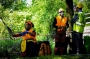European Tree Worker f3t-European-tree-worker-(13).jpg