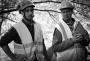 European Tree Worker f3t-European-tree-worker-(14).jpg