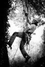 European Tree Worker f3t-European-tree-worker-(16).jpg