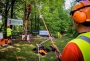 European Tree Worker f3t-European-tree-worker-(20).jpg