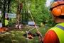 European Tree Worker f3t-European-tree-worker-(20).jpg