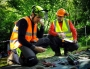 European Tree Worker f3t-European-tree-worker-(25).jpg