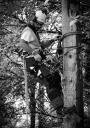 European Tree Worker f3t-European-tree-worker-(26).jpg
