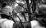 European Tree Worker f3t-European-tree-worker-(35).jpg