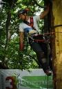 European Tree Worker f3t-European-tree-worker-(4).jpg