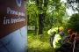 European Tree Worker f3t-European-tree-worker-(9).jpg