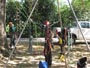 Workshop Treeclimbing e Sicurezza III - Abbattimenti - 2009 workshop-mark-bridge-09-096.jpg