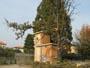 Workshop Treeclimbing: nuovi materiali e loro corretto utilizzo, dpi, normative - 2009 IMG_2629.jpg
