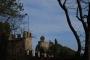 Workshop Tree climbing e Arboricoltura - San Marino - 2014 1.jpg