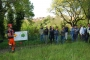 Workshop Tree climbing e Arboricoltura - San Marino - 2014 1a.jpg