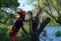 Workshop Tree climbing e Arboricoltura - San Marino - 2014 1b.jpg