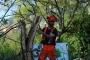 Workshop Tree climbing e Arboricoltura - San Marino - 2014 3.jpg