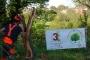 Workshop Tree climbing e Arboricoltura - San Marino - 2014 3c.jpg
