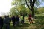 Workshop Tree climbing e Arboricoltura - San Marino - 2014 4e.jpg