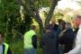 Workshop Tree climbing e Arboricoltura - San Marino - 2014 4g.jpg
