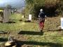 Workshop Uso della Motosega e Dimostrazioni di Treeclimbing - 2012 motosega-treeclimbing04.jpg