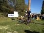 Workshop Uso della Motosega e Dimostrazioni di Treeclimbing - 2012 motosega-treeclimbing15.jpg