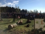 Workshop Uso della Motosega e Dimostrazioni di Treeclimbing - 2012 motosega-treeclimbing20.jpg