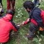 POTATURA DEGLI ALBERI ORNAMENTALI corso-potatura-alberi-13.jpg