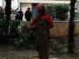 Professione arboricoltore professione-arboricoltore004.jpg