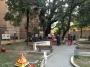 Professione arboricoltore professione-arboricoltore011.jpg