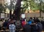 Professione arboricoltore professione-arboricoltore020.jpg
