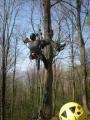 Gestione delle emergenze e recupero del ferito in tree climbing gestione-emergenze-tree-climbing-mark-bridge-001.jpg