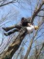 Gestione delle emergenze e recupero del ferito in tree climbing gestione-emergenze-tree-climbing-mark-bridge-011.jpg