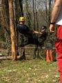 Gestione delle emergenze e recupero del ferito in tree climbing gestione-emergenze-tree-climbing-mark-bridge-014.jpg