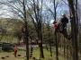 Gestione delle emergenze e recupero del ferito in tree climbing gestione-emergenze-tree-climbing-mark-bridge-015.jpg