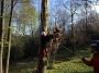 Gestione delle emergenze e recupero del ferito in tree climbing gestione-emergenze-tree-climbing-mark-bridge-020.jpg