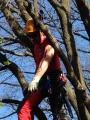 Gestione delle emergenze e recupero del ferito in tree climbing gestione-emergenze-tree-climbing-mark-bridge-021.jpg