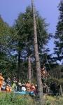 Seminario tecnico di arboricoltura presso Fondazione Cima seminario-cima-arboricoltura013.jpg